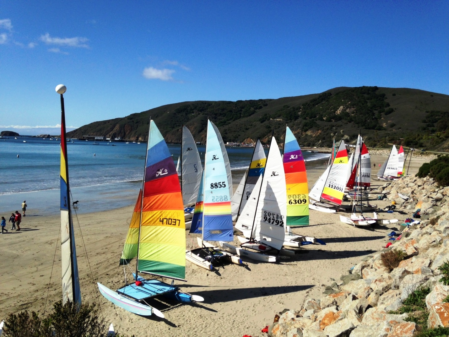 Catamarans on Olde Port Beach