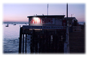 Patriots Sportfishing building at sunset Opens in new window